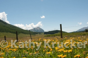 -008Crested_Butte-kk-31