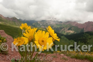 -010Crested_Butte-kk-56